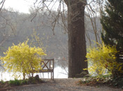 spring in bucks county on the delaware river