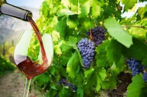 Wine making in Pennsylvania