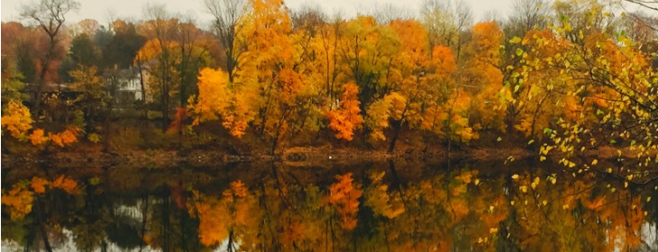 Fall in Pennsylvania River Reflection from the dock at Bridgeton House on the Delaware